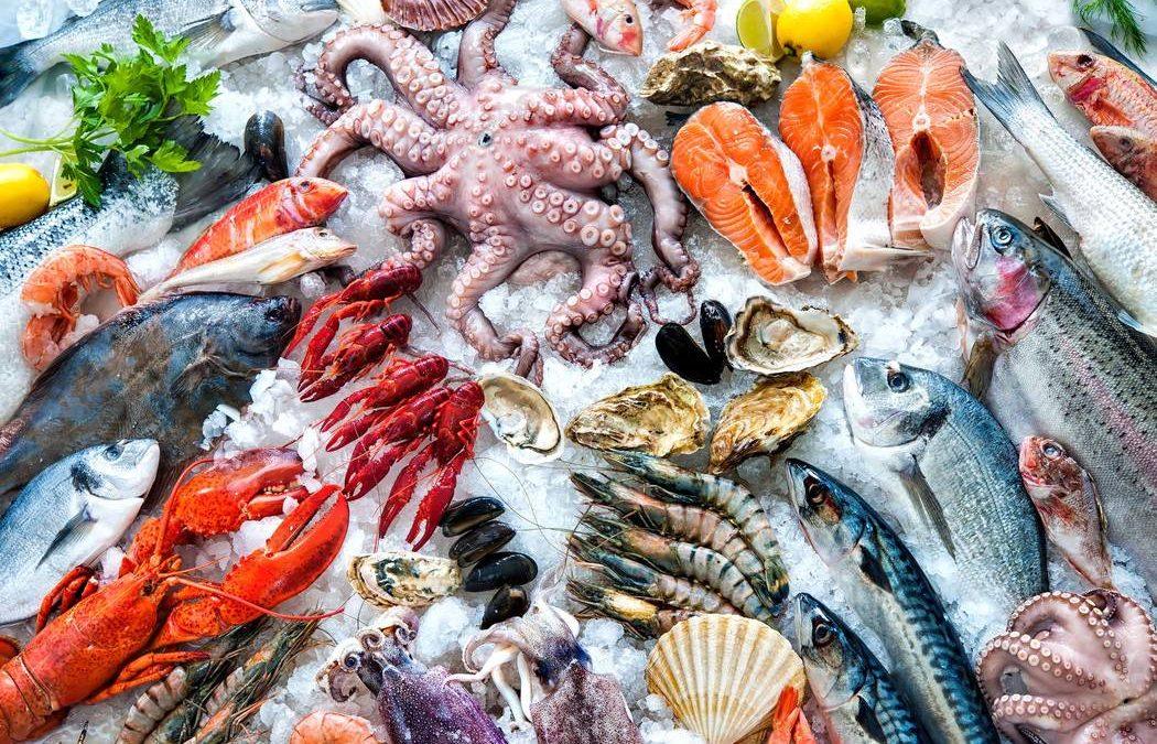 La Alianza de HACCP de Pescados y Mariscos capacita a nuestros instructores