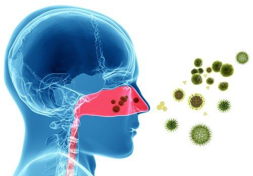 Alergias alimentarias y no alimentarias